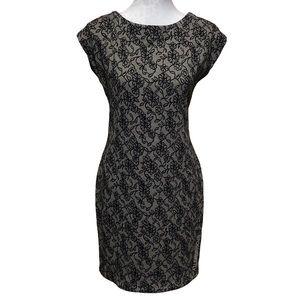 Zara Lace Printed Sheath Dress